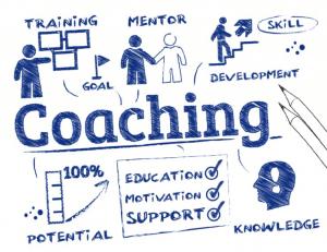 Coaching driving instructors